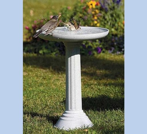 Kozy Heated Birdbath with Pedestal