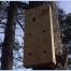 Woodpecker Sounding Board